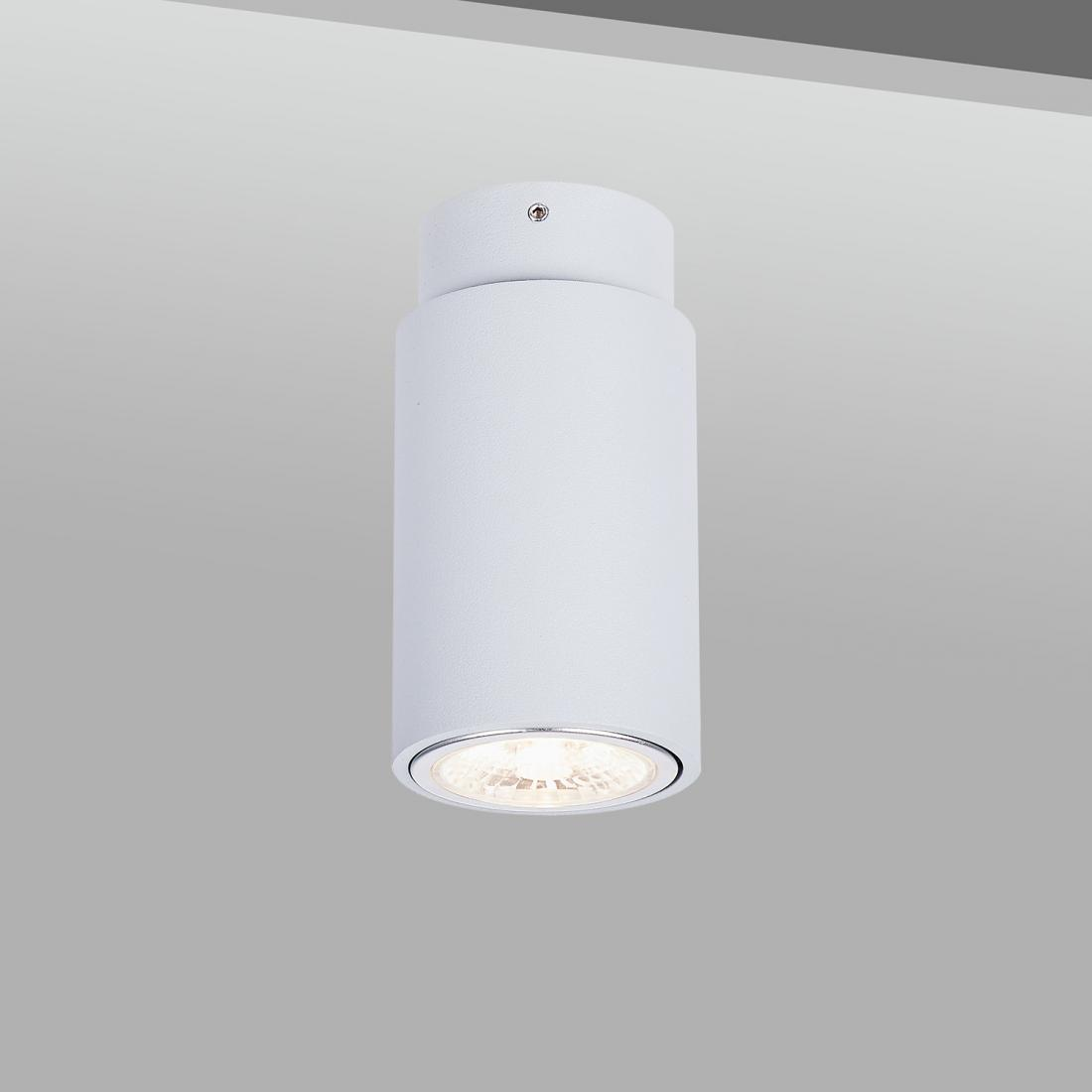 Architectural GU10 Halogen Ceiling Light