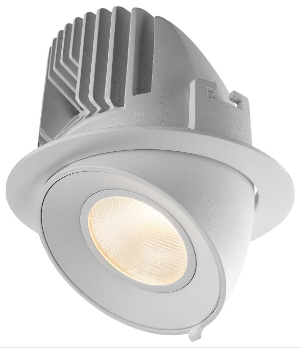 15W adjustable trunk LED recessed spot down light