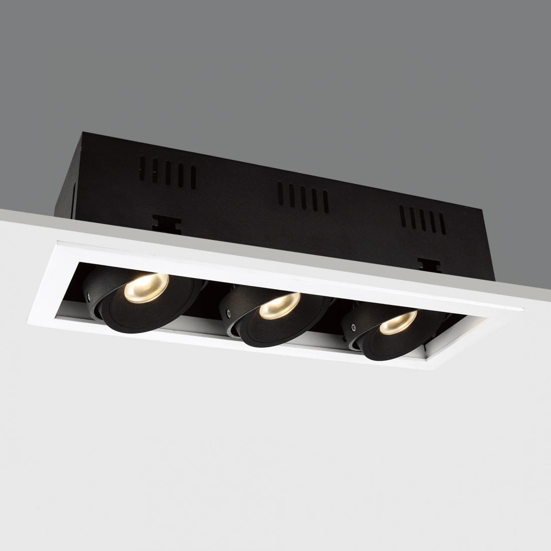 architecture LED downlight