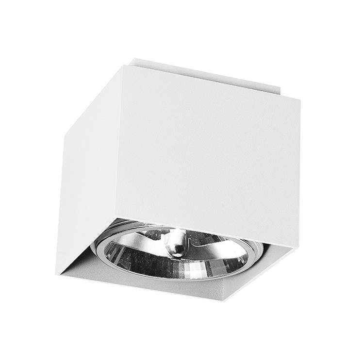 Modern Indoor IP20 Surface Mounted G53 Ceiling Lights